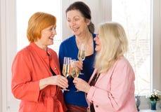 Amis très fermés de maman tenant des verres de vins Photo stock