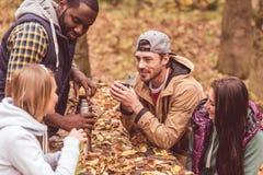 Amis versant la boisson chaude dans la forêt Image libre de droits