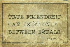 Amis vrais Platon Photos libres de droits