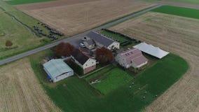Amische Hochzeit in einem amischen Bauernhof gefangen genommen durch ein Brummen stock footage