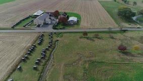 Amische Hochzeit in einem amischen Bauernhof gefangen genommen durch ein Brummen stock video footage