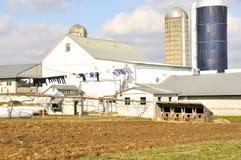 Amischer Bauernhof Lizenzfreie Stockbilder