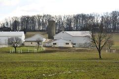 Amischer Bauernhof Lizenzfreie Stockfotos