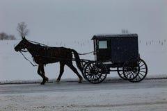 Amischer Buggy reist durch Schneesturm lizenzfreie stockfotos