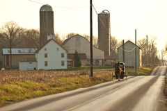 Amischer Pferdenwagen und -bauernhof Stockfotografie