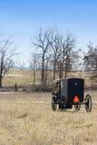 Amisches Pferd und Buggy lizenzfreies stockfoto