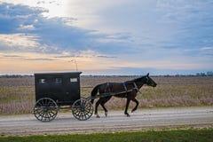 Amisches Pferd und Buggy Lizenzfreie Stockbilder