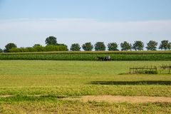 Amisches Pferd und Buggy, die nach Hause vorangeht stockfotografie