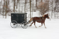 Amisches Pferd und Wagen auf schneebedeckter Straße Stockbilder