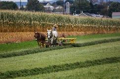 amish αγρότης Στοκ εικόνα με δικαίωμα ελεύθερης χρήσης