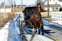 Amish. Buggy near Lancaster, PA Royalty Free Stock Photography