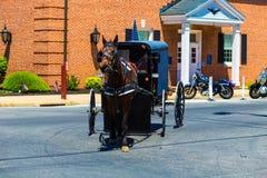 Amish barnvagn i Strasburg Royaltyfri Foto