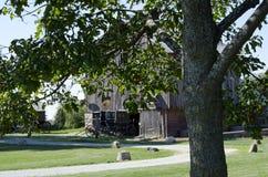 Amish barnvagn och gammal ladugård Royaltyfria Foton