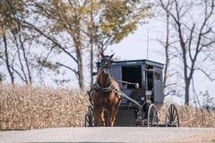 Amish barnvagn på en landsväg Royaltyfri Bild