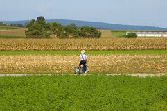 Amish Boy On Scooter. Stock Images
