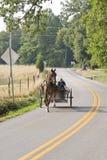 Amish boys Stock Image