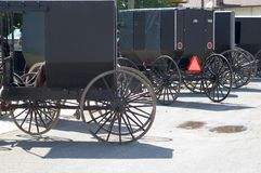 amish buggies Arkivfoto