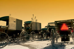 Amish buggies Stock Foto's