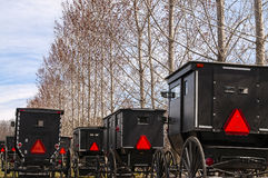 amish buggies Royaltyfria Bilder