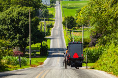 Amish Buggies Travel Lancaster County Road Royalty Free Stock Images