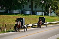Amish Buggies Travel on Road. Several horses pulling Amish buggies travel down a highway Royalty Free Stock Photography