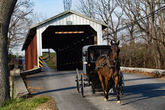 Amish Buggy at Covered Bridge Royalty Free Stock Image