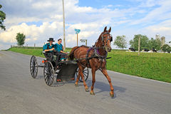 Amish Buggy Ride Stock Photos