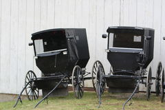 Amish Buggy`s royalty free stock images
