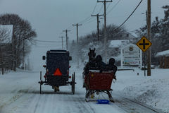 Amish buggy and a Sleigh Stock Image