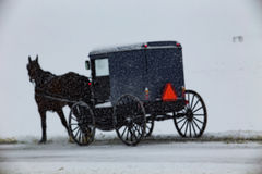 Amish Buggy Travels Through Snow Royalty Free Stock Images