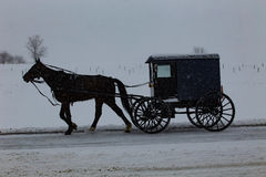 Amish Buggy Travels Through Snowstorm Royalty Free Stock Photos