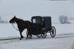 Amish Buggy Travels During Snowstorm Royalty Free Stock Photography