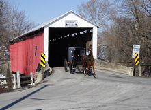 Amish Carriage. An Amish carriage passing through a Lancaster County covered bridge Royalty Free Stock Photo