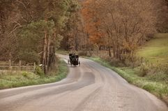 Amish Carriage. Amish buggy coming down country road in Ohio Stock Image