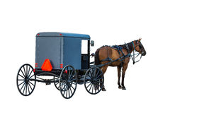 Amish carriage. Amish buggy on plain white background Royalty Free Stock Images