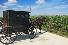 Amish carriage Royalty Free Stock Photo