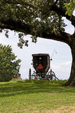 Amish carriage in the fields. A back view of an Amish horse-drawn carriage with its back open. It has been left of a field, under the shade of a large tree Stock Photo