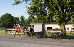 Amish Carriage and Flower Cart. An Amish carriage pulling a cart filled with flower plants.Photo taken in rural Lancaster County,Pennsylvania,USA Royalty Free Stock Photography
