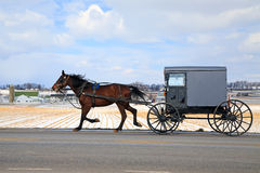 Amish Carriage in Winter. An Amish Carriage travels in snow covered rural Lancaster County, Pennsylvania, USA Royalty Free Stock Photo