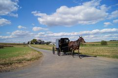 Amish cart. Amish card moving along the road on a bright sunny day Stock Photography