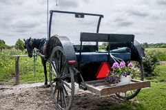 Amish cart,horse-drawn. An Amish horse-drawn cart tied to a hitching post Stock Photos