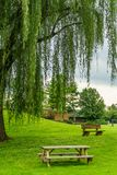 Amish country farm a place of rest, a bench and a table under a tree in Lancaster, PA Royalty Free Stock Photo