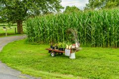 Amish country farm, small thing for sale, field agriculture and grazing cows in Lancaster, PA Stock Photo