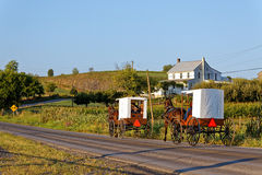 Amish Families Travel With Horse and Carriage Stock Images