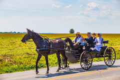 Amish familj i svart vagn Arkivfoton