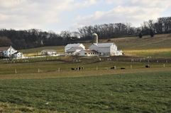 Amish farm Stock Photography