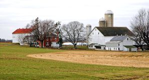 Amish Farm Royalty Free Stock Photos