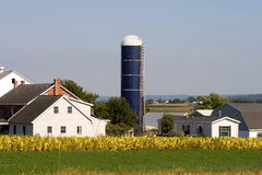 Amish farm Royalty Free Stock Photography