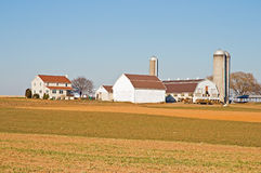Amish farm barns and silo. A view of a classic Amish home and barns on a rural farm near Lancaster, Pennsylvania, (USA Stock Photo
