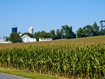 Amish Farm, Lancaster USA Royalty Free Stock Photo